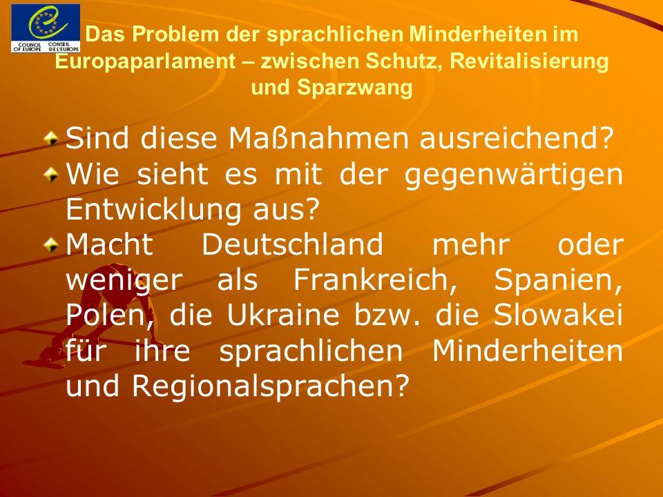 Das Problem der sprachlichen Minderheiten im Europaparlament – zwischen Schutz, Revitalisierung und Sparzwang Sind diese Maßnahmen ausreichend? Wie si