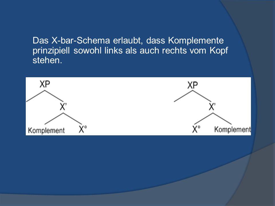 Das X-bar-Schema erlaubt, dass Komplemente prinzipiell sowohl links als auch rechts vom Kopf stehen.