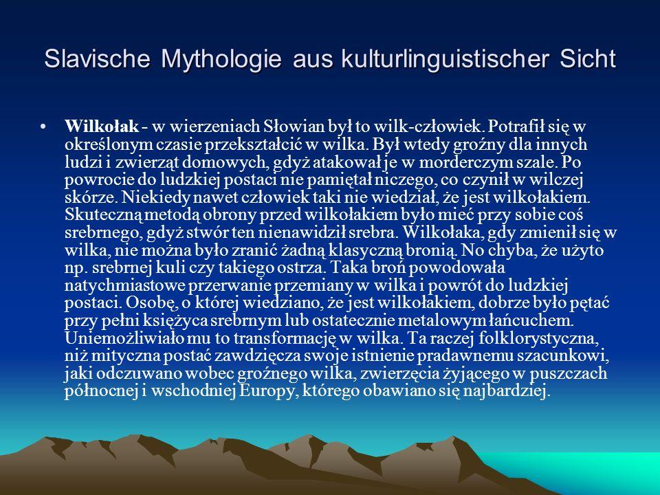 Slavische Mythologie aus kulturlinguistischer Sicht Wilkołak - w wierzeniach Słowian był to wilk-człowiek.