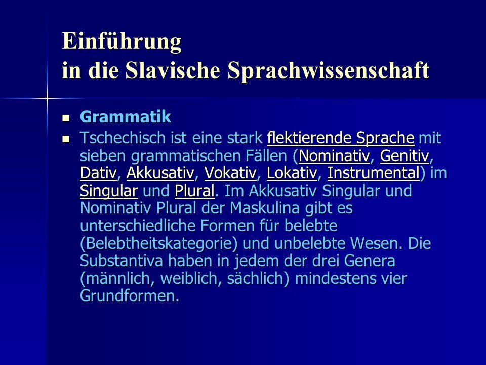 Einführung in die Slavische Sprachwissenschaft Grammatik Grammatik Tschechisch ist eine stark flektierende Sprache mit sieben grammatischen Fällen (Nominativ, Genitiv, Dativ, Akkusativ, Vokativ, Lokativ, Instrumental) im Singular und Plural.