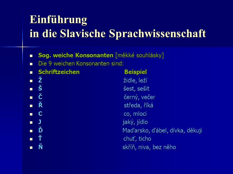 Einführung in die Slavische Sprachwissenschaft Sog.