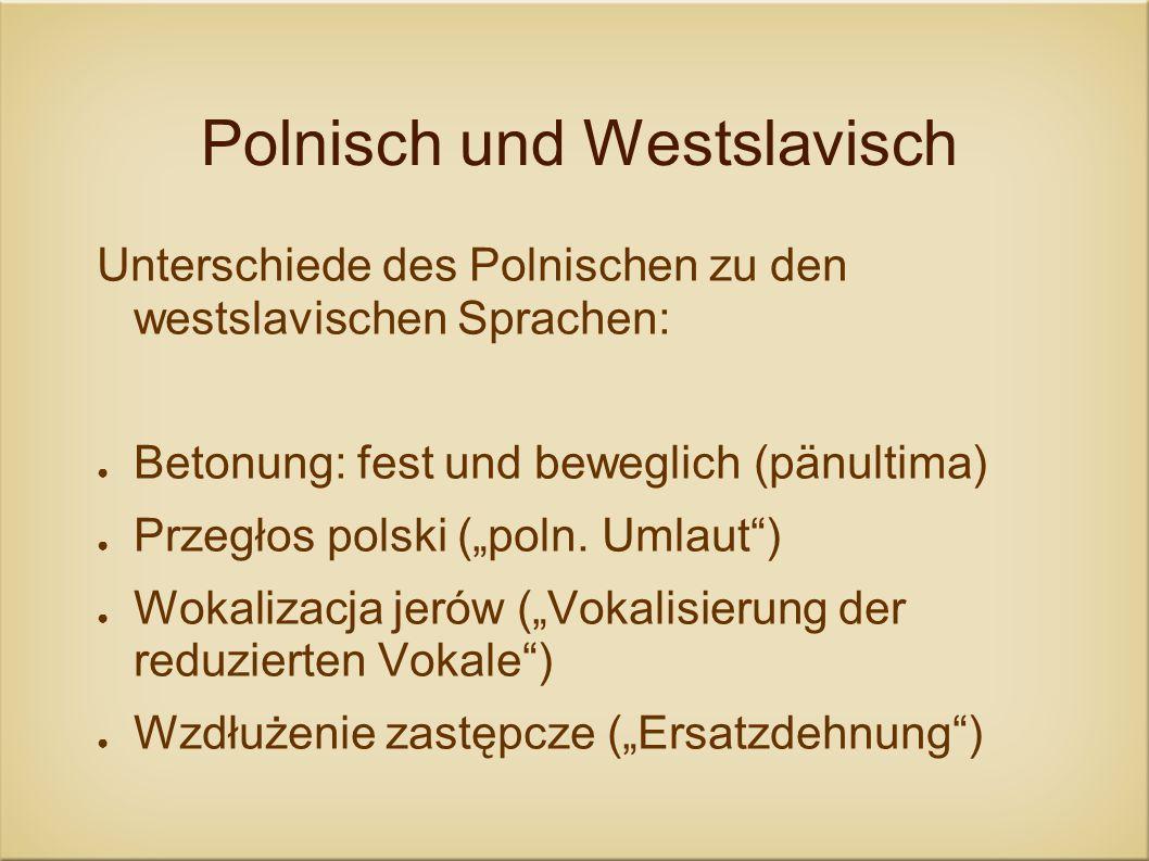 Polnisch und Westslavisch Unterschiede des Polnischen zu den westslavischen Sprachen: Betonung: fest und beweglich (pänultima) Przegłos polski (poln.