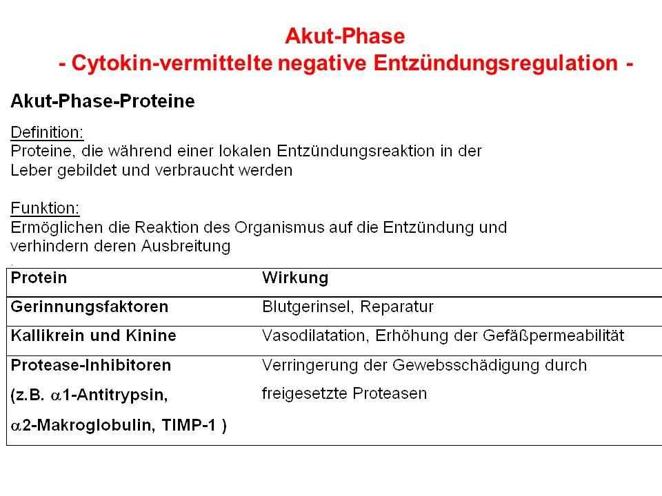 Akut-Phase - Cytokin-vermittelte negative Entzündungsregulation -