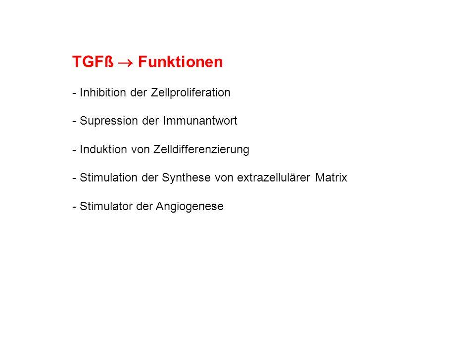 TGFß Funktionen - Inhibition der Zellproliferation - Supression der Immunantwort - Induktion von Zelldifferenzierung - Stimulation der Synthese von ex