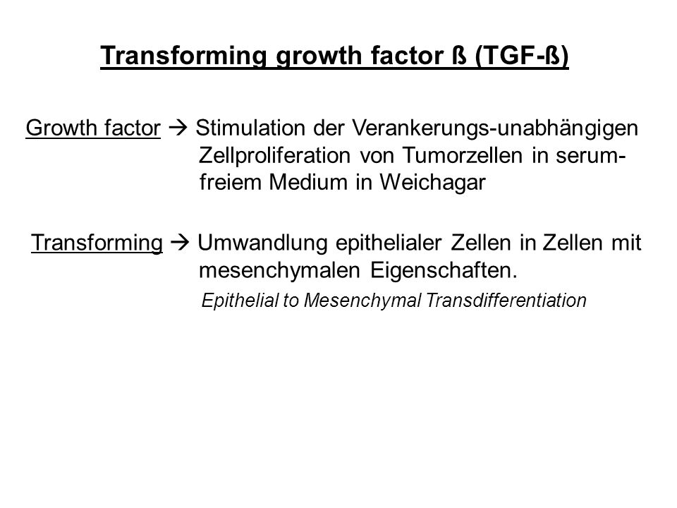 Transforming growth factor ß (TGF-ß) Growth factor Stimulation der Verankerungs-unabhängigen Zellproliferation von Tumorzellen in serum- freiem Medium