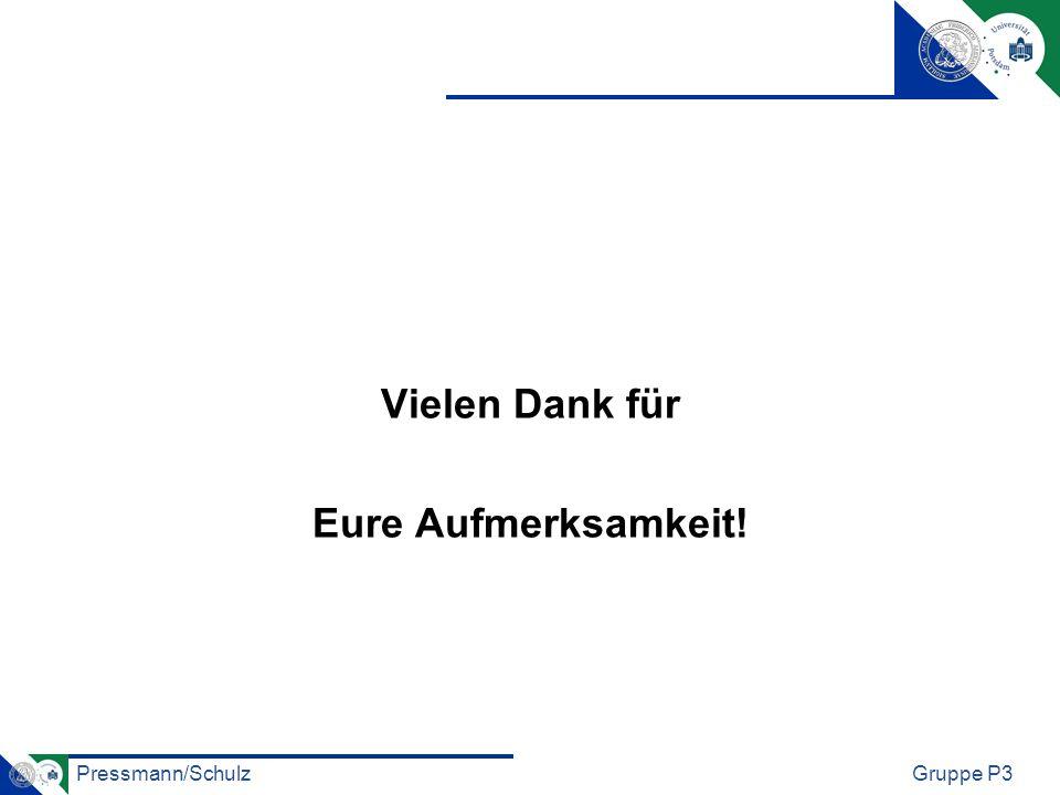 Pressmann/SchulzGruppe P3 Vielen Dank für Eure Aufmerksamkeit!