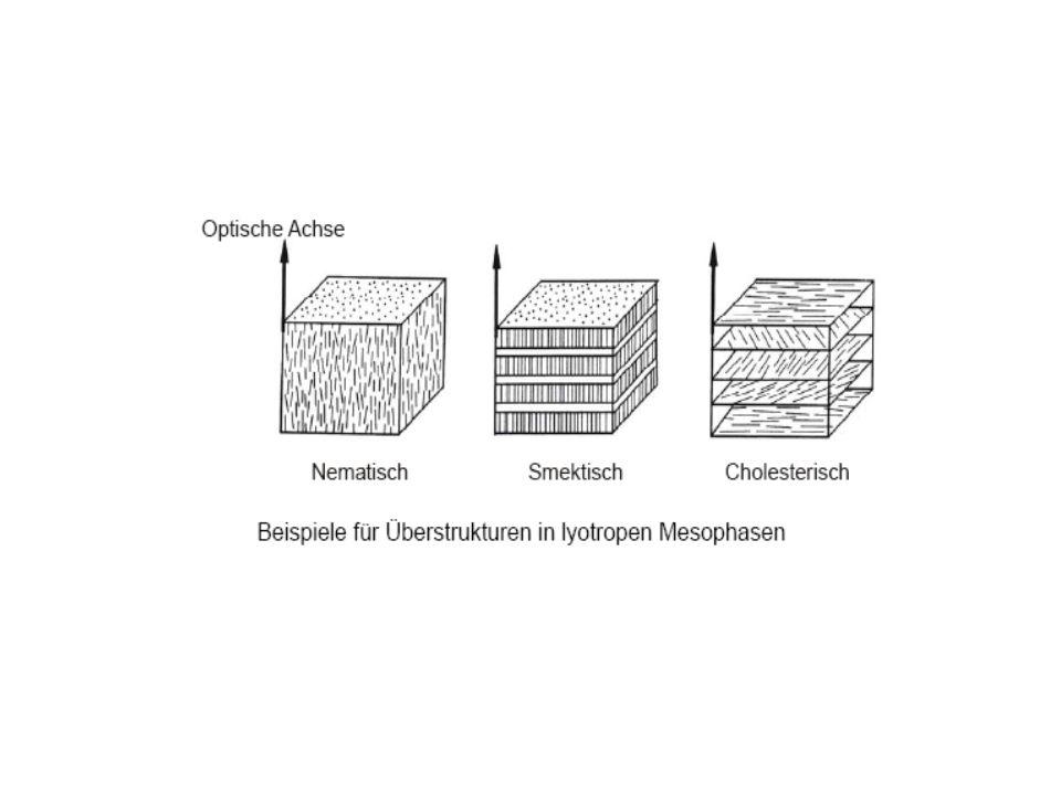 Visualisierung der bikontinuierlichen Phase einer Mikroemulsion
