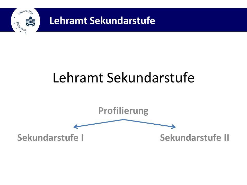 Profilierung Sekundarstufe I Sekundarstufe II Lehramt Sekundarstufe