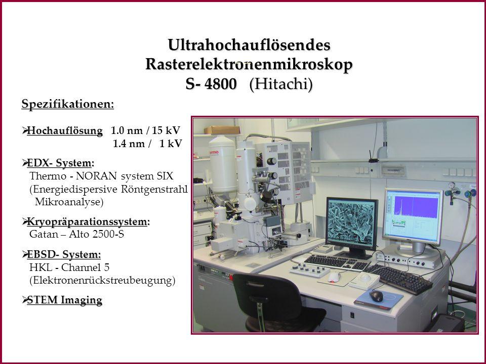 UltrahochauflösendesRasterelektronenmikroskop S- 4800 (Hitachi) Spezifikationen: Hochauflösung Hochauflösung 1.0 nm / 15 kV 1.4 nm / 1 kV EDX- System: