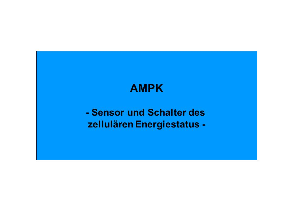 AMPK - Sensor und Schalter des zellulären Energiestatus -