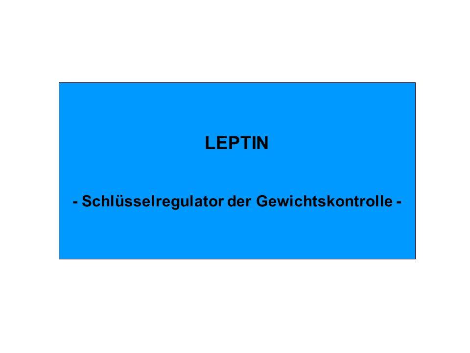 LEPTIN - Schlüsselregulator der Gewichtskontrolle -
