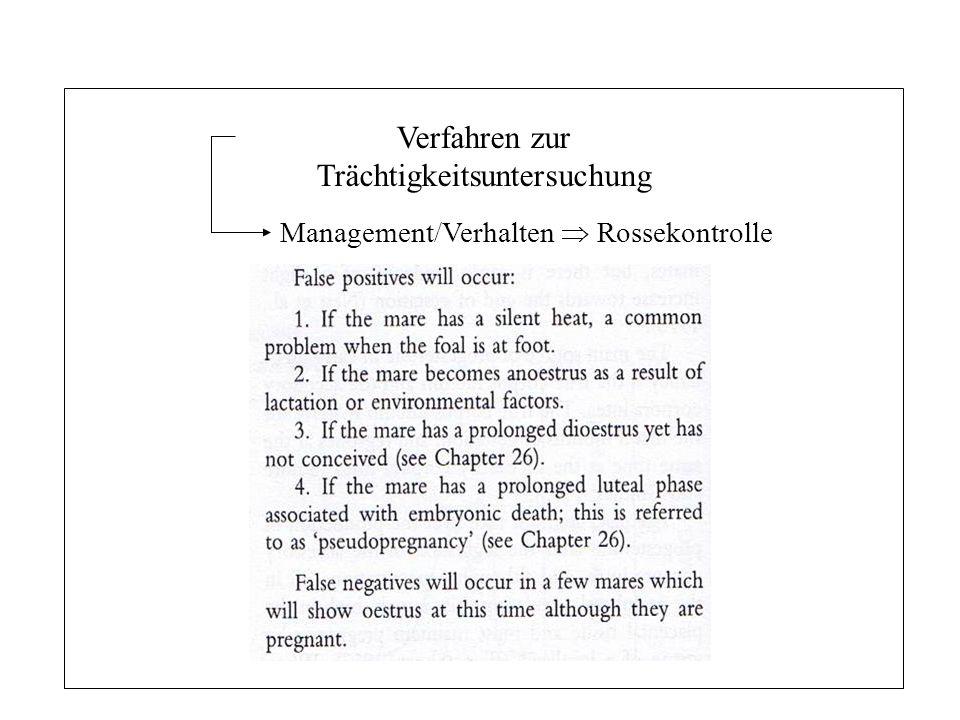 16 Trächtigkeit - Pferd Verfahren zur Trächtigkeitsuntersuchung Management/Verhalten Rossekontrolle