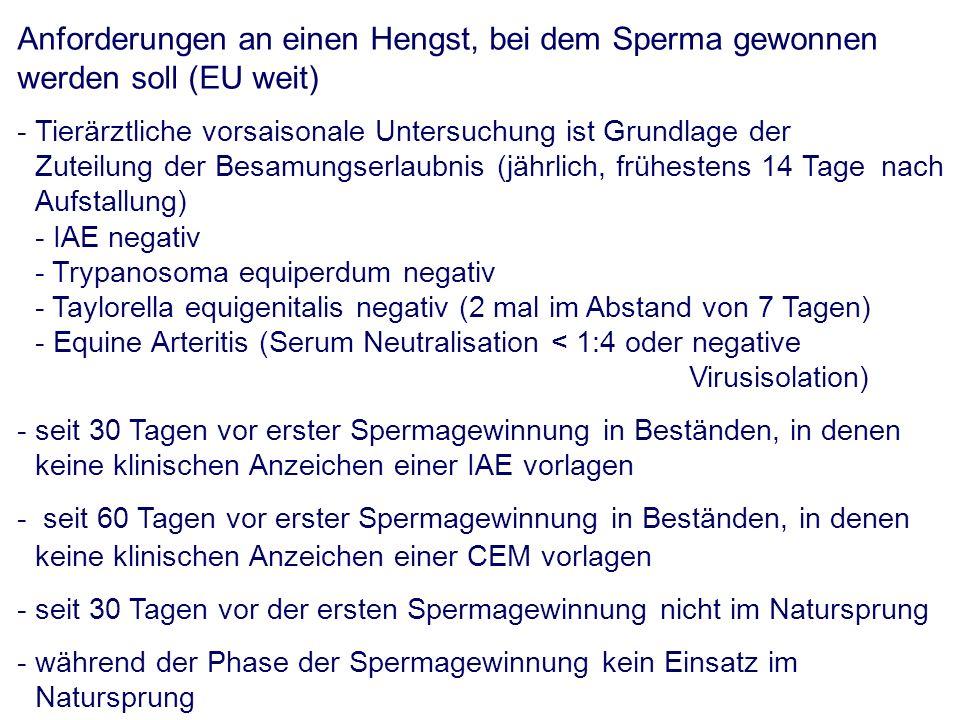 Anforderungen an einen Hengst, bei dem Sperma gewonnen werden soll (EU weit) - Tierärztliche vorsaisonale Untersuchung ist Grundlage der Zuteilung der