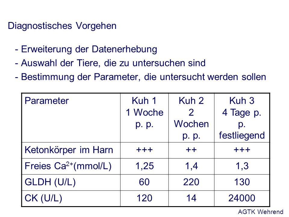 Diagnostisches Vorgehen - Erweiterung der Datenerhebung - Auswahl der Tiere, die zu untersuchen sind - Bestimmung der Parameter, die untersucht werden