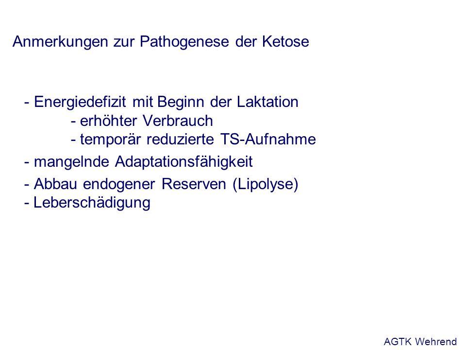 Anmerkungen zur Pathogenese der Ketose - Energiedefizit mit Beginn der Laktation - erhöhter Verbrauch - temporär reduzierte TS-Aufnahme - mangelnde Ad