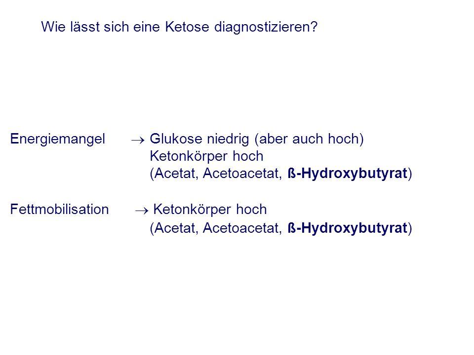 Wie lässt sich eine Ketose diagnostizieren? Energiemangel Glukose niedrig (aber auch hoch) Ketonkörper hoch (Acetat, Acetoacetat, ß-Hydroxybutyrat) Fe