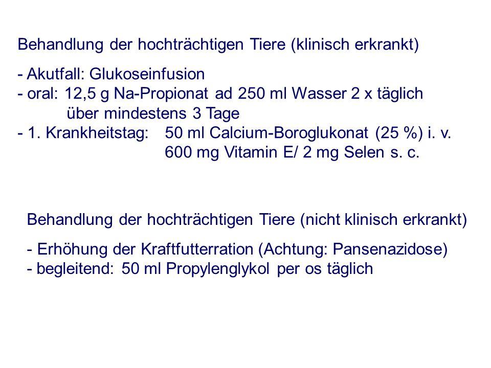 Behandlung der hochträchtigen Tiere (nicht klinisch erkrankt) - Erhöhung der Kraftfutterration (Achtung: Pansenazidose) -begleitend: 50 ml Propylengly
