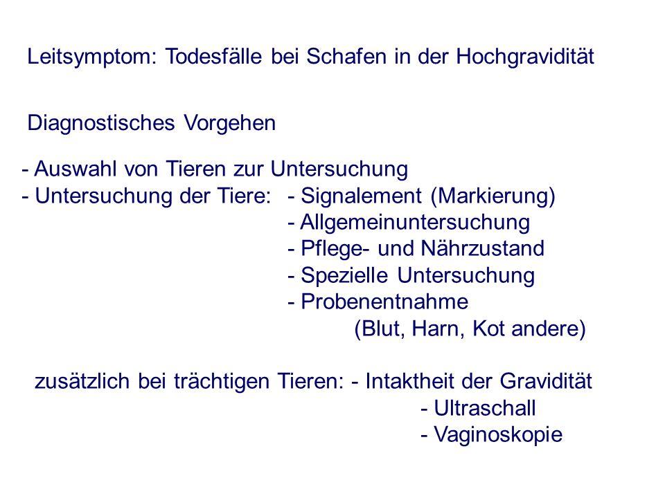 - Auswahl von Tieren zur Untersuchung - Untersuchung der Tiere:- Signalement (Markierung) - Allgemeinuntersuchung - Pflege- und Nährzustand - Speziell