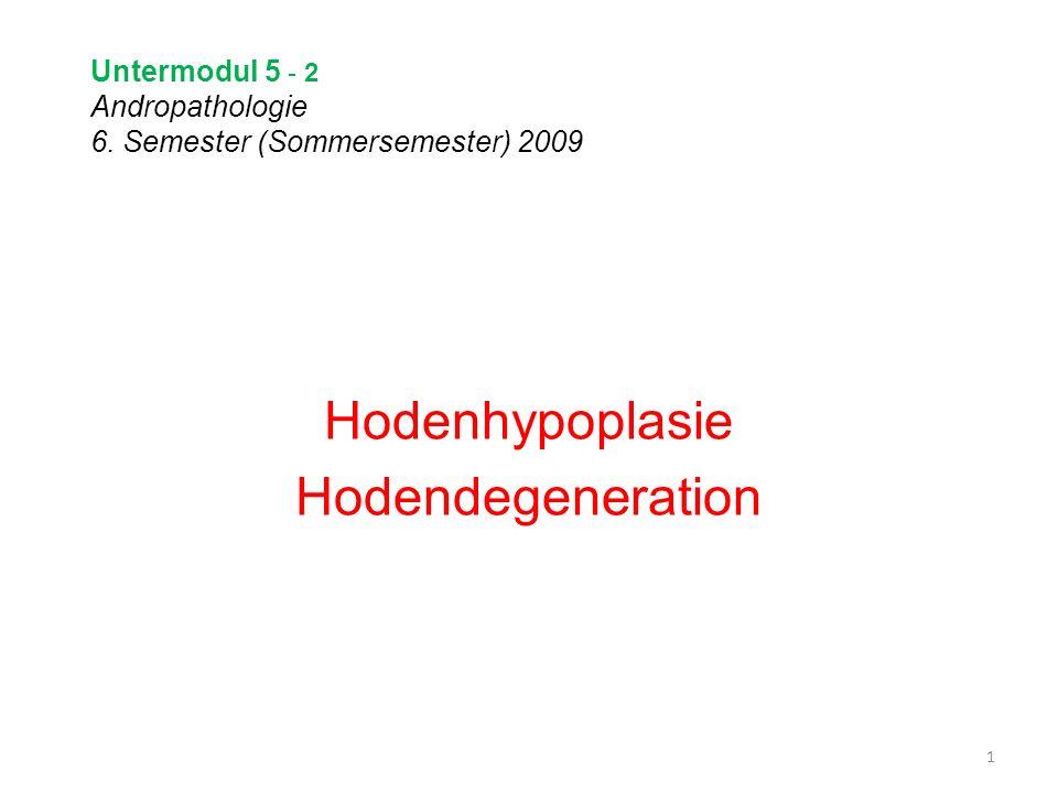 Untermodul 5 - 2 Andropathologie 6. Semester (Sommersemester) 2009 Hodenhypoplasie Hodendegeneration 1