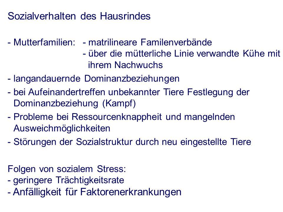 Hinweise auf Störungen im Bereich des sozialen Gefüge - Verletzungen insbesondere im Schulterbereich D.