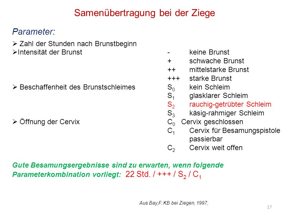 Samenübertragung bei der Ziege Parameter: Zahl der Stunden nach Brunstbeginn Intensität der Brunst- keine Brunst + schwache Brunst ++ mittelstarke Bru