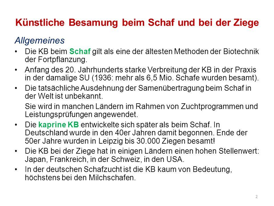 Künstliche Besamung in der deutschen Ziegenzucht Zweck: - Aufbau eines Systems der Nachkommenschaftsprüfung wertvoller Vatertiere -Leistungserhöhung vor allem in der Milchleistung und im Milchfettgehalt Milchziegenpopulation: etwa 120 000 Tiere, davon 25% in den neuen Bundesländern Wichtigste Milchrassen: Weiße Deutsche Edelziege (WDE); Bunte Deutsche Edelziege (BDE) und Thüringer Waldziege Pilotprogramm KB-Ziege (1995-2000) entwickelt: 3