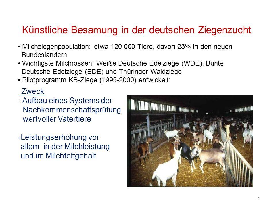 Künstliche Besamung in der deutschen Ziegenzucht Zweck: - Aufbau eines Systems der Nachkommenschaftsprüfung wertvoller Vatertiere -Leistungserhöhung v