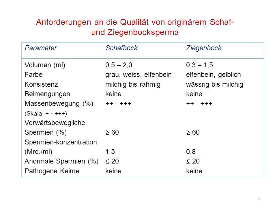 5 ParameterSchafbockZiegenbock Volumen (ml) Farbe Konsistenz Beimengungen Massenbewegung (%) (Skala: + - +++) Vorwärtsbewegliche Spermien (%) Spermien