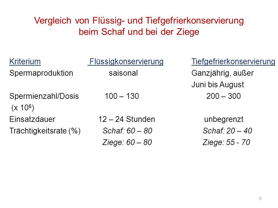 Flüssigkonservierung des Spermas beim Schafbock Verdünner Konservierungs- Einsatzdauer temperatur (°C) (Std) Eidotter-Glucose-Citrat 2 – 5 bis 24 Eidotter-Citrat Eidotter-TRIS-Fructose Pasteurisierte Milch 18 – 22 bis 8 Trockenmagermilch 7