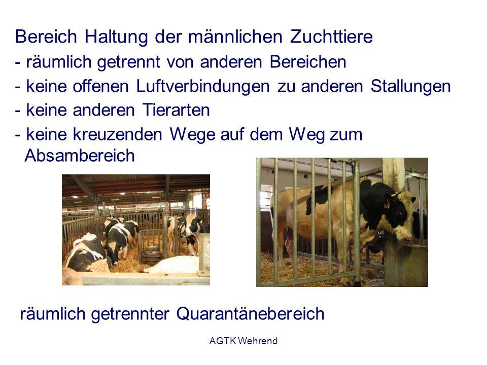 AGTK Wehrend Bereich Haltung der männlichen Zuchttiere - räumlich getrennt von anderen Bereichen - keine offenen Luftverbindungen zu anderen Stallungen - keine anderen Tierarten - keine kreuzenden Wege auf dem Weg zum Absambereich räumlich getrennter Quarantänebereich
