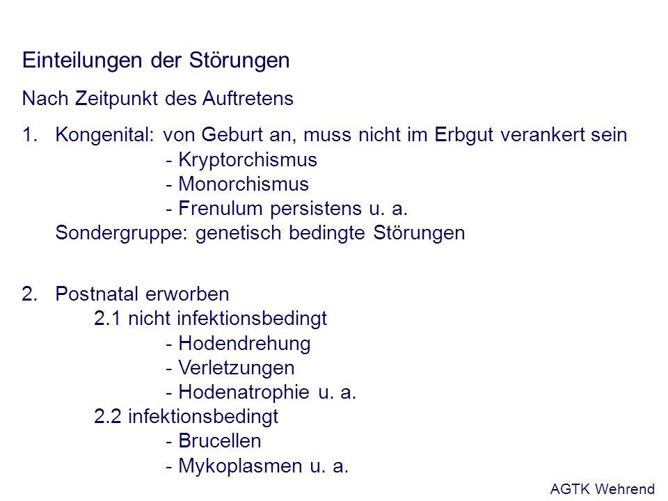 Einteilungen der Störungen Nach Zeitpunkt des Auftretens 1.Kongenital: von Geburt an, muss nicht im Erbgut verankert sein - Kryptorchismus - Monorchismus - Frenulum persistens u.