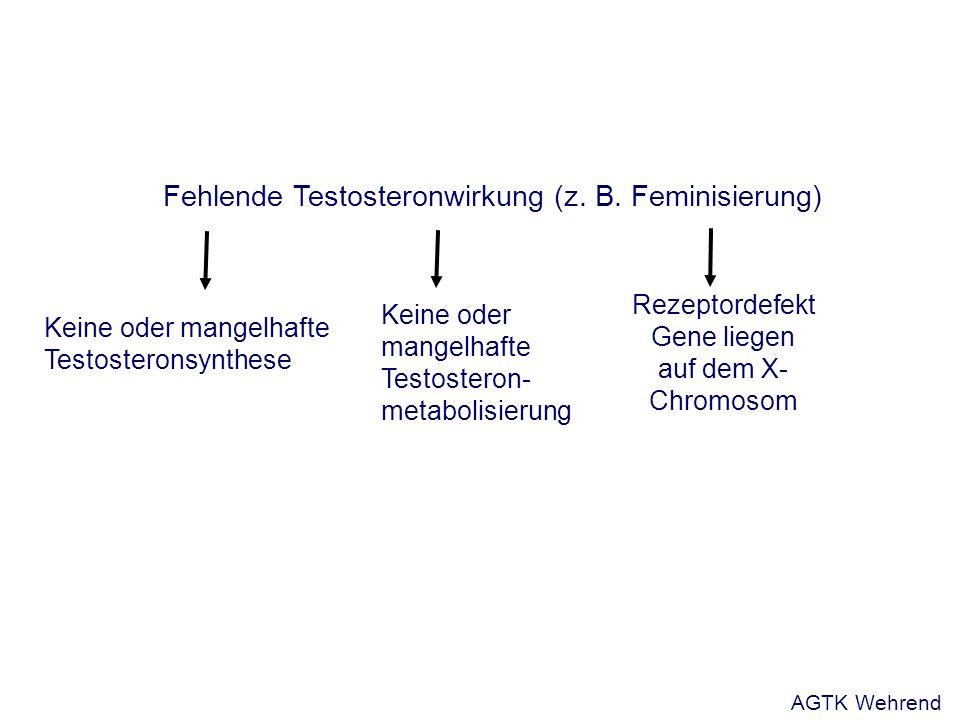 Fehlende Testosteronwirkung (z. B.