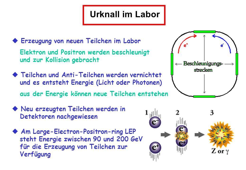 Erzeugung von neuen Teilchen im Labor Elektron und Positron werden beschleunigt und zur Kollision gebracht Teilchen und Anti-Teilchen werden vernichte