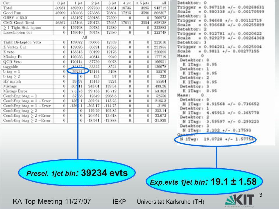 4 KA-Top-Meeting 11/06/07 IEKP Universität Karlsruhe (TH)