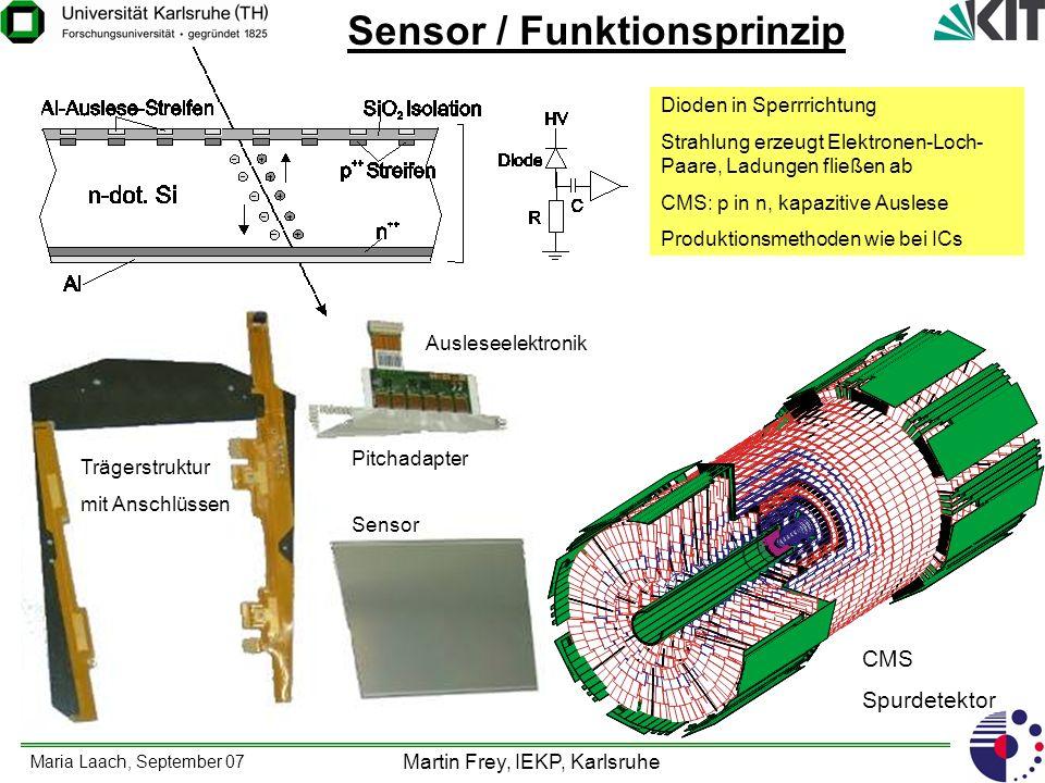 Maria Laach, September 07 Martin Frey, IEKP, Karlsruhe Testprogramm für M-Cz Sensoren Bau von Detektormodulen mit APV Auslesehybriden.