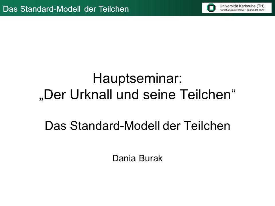 Das Standard-Modell der Teilchen 15.Oktober 2006 Dania Burak 12 Die elektomag.