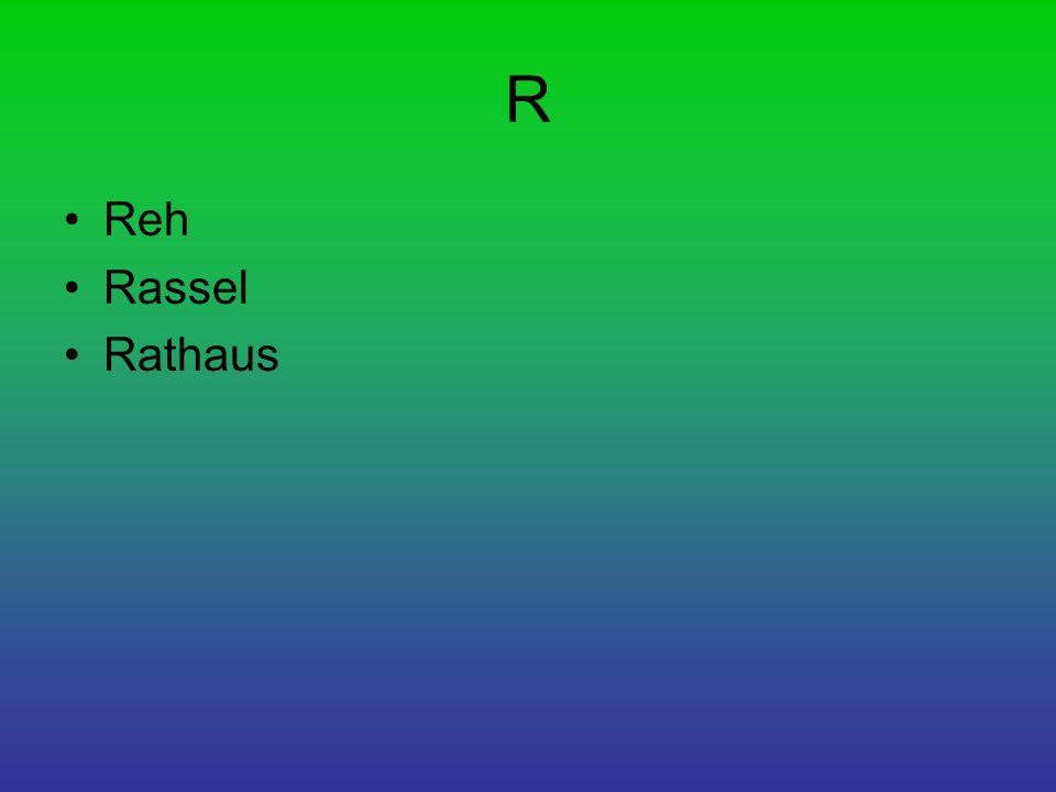 R Reh Rassel Rathaus