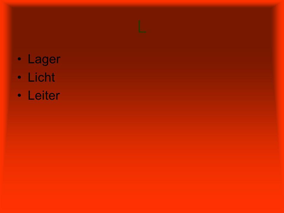 L Lager Licht Leiter