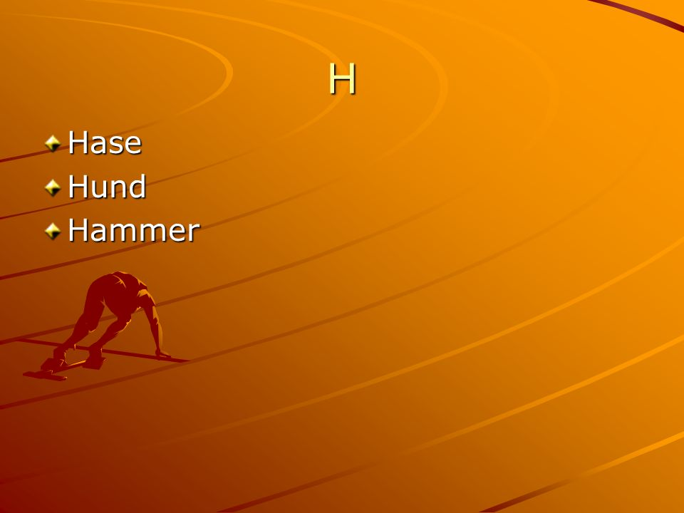 H HaseHundHammer