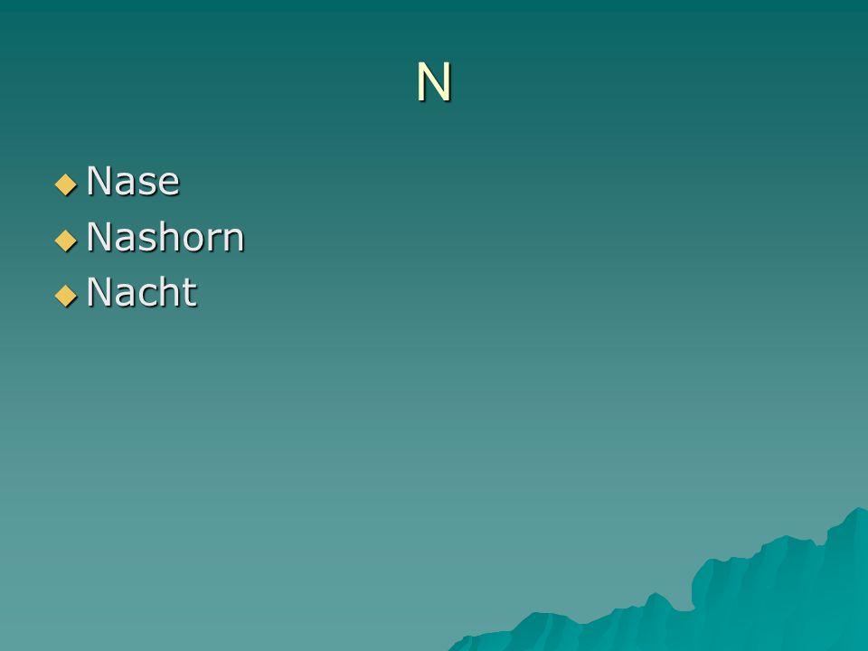 N Nase Nase Nashorn Nashorn Nacht Nacht