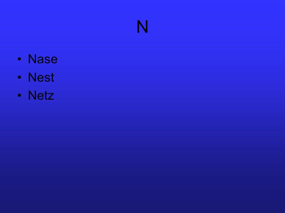 N Nase Nest Netz