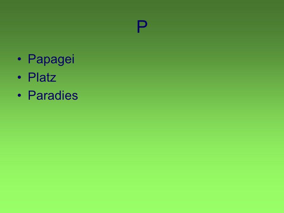 P Papagei Platz Paradies