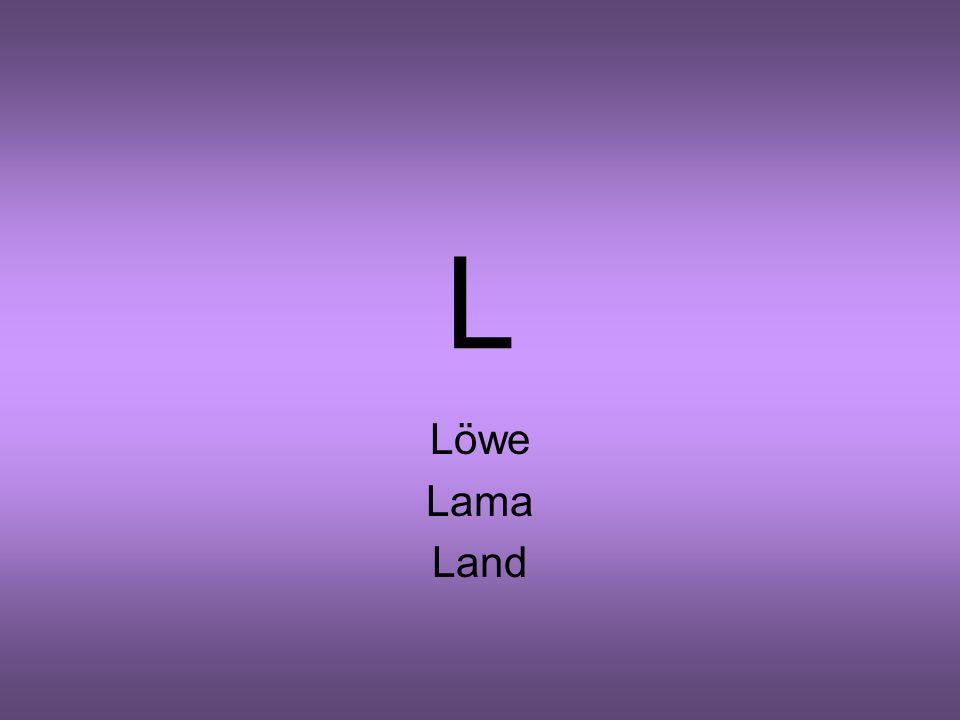 L Löwe Lama Land