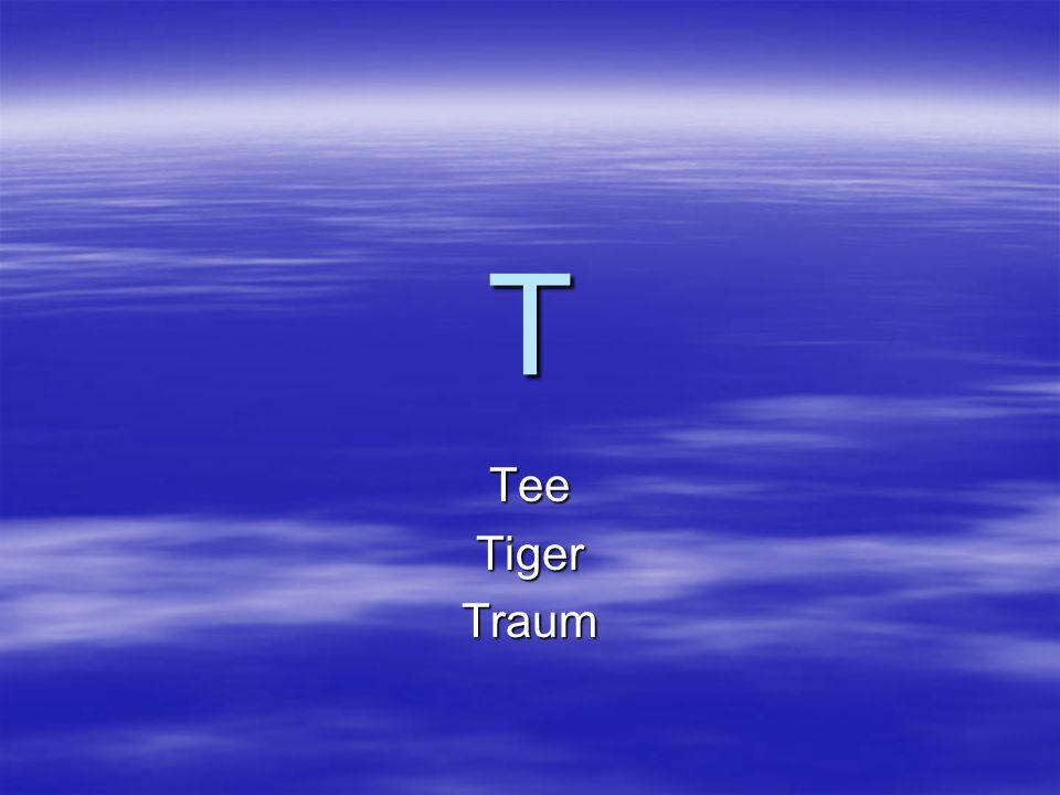 T TeeTigerTraum