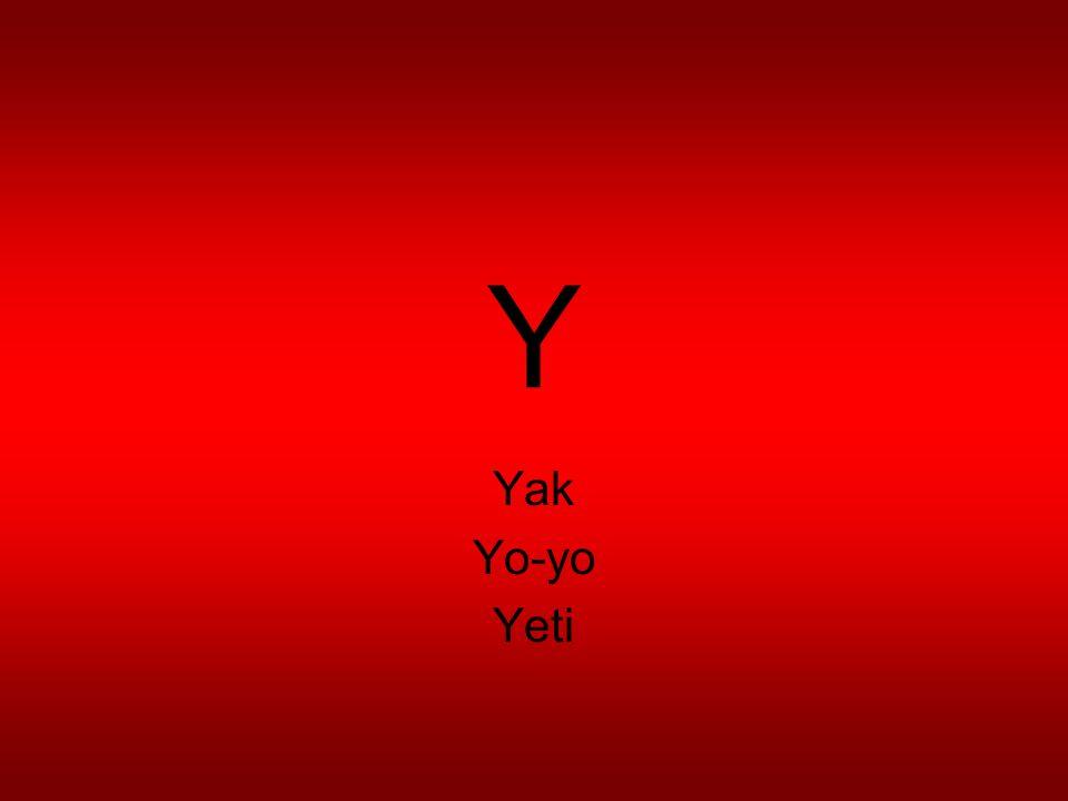 Y Yak Yo-yo Yeti