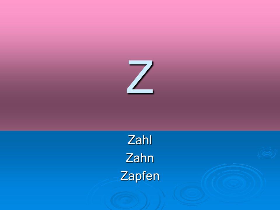 Z ZahlZahnZapfen