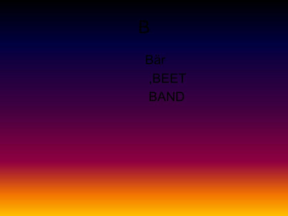 B Bär,BEET BAND
