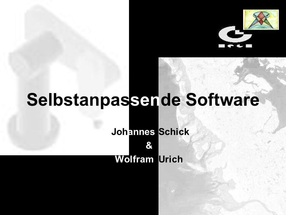 Johannes Schick & Wolfram Urich Selbstanpassende Software