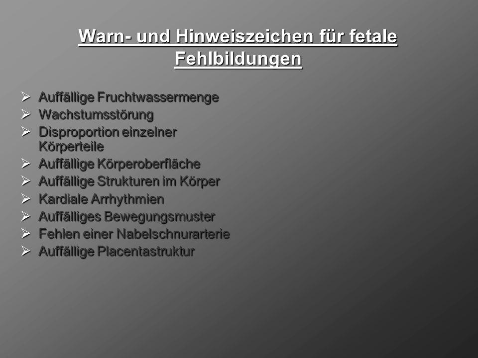 3.Ultraschallscreening (28.-32.SSW): 3.