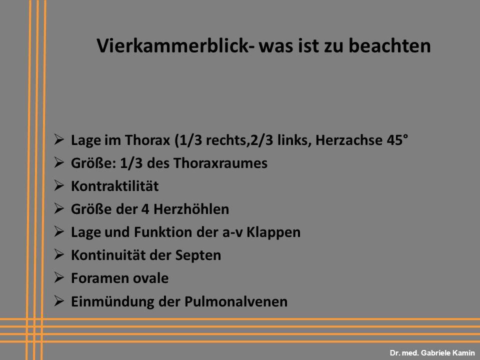 Vierkammerblick- was ist zu beachten Lage im Thorax (1/3 rechts,2/3 links, Herzachse 45° Größe: 1/3 des Thoraxraumes Kontraktilität Größe der 4 Herzhöhlen Lage und Funktion der a-v Klappen Kontinuität der Septen Foramen ovale Einmündung der Pulmonalvenen Dr.